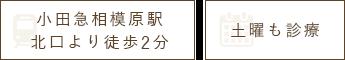 小田急相模原駅より徒歩3分 土曜も診療
